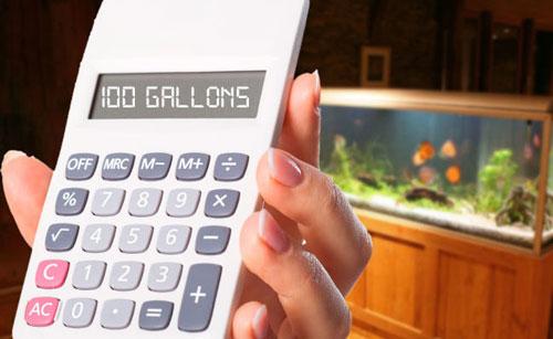 apps para acuarios